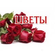 Цветы на Тургенева